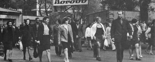 Femme industrielle – industrijske radnice u socijalističkoj Hrvatskoj – primjer Borova